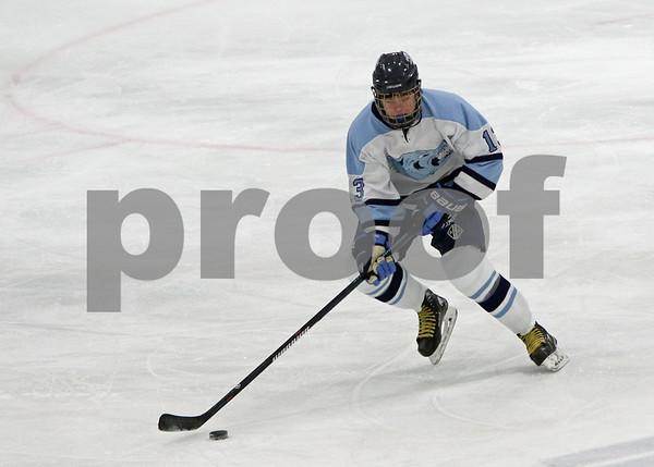 2015 Sports