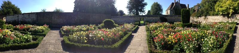 Dahlias in the formal garden at Avbury Manor