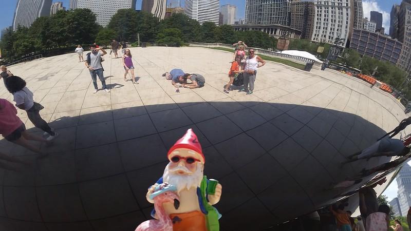 2015 Summer Gnome Contest