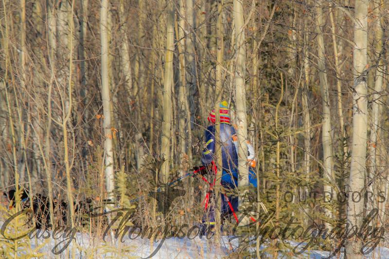Greg Jurek in the trees heading for the finish line.