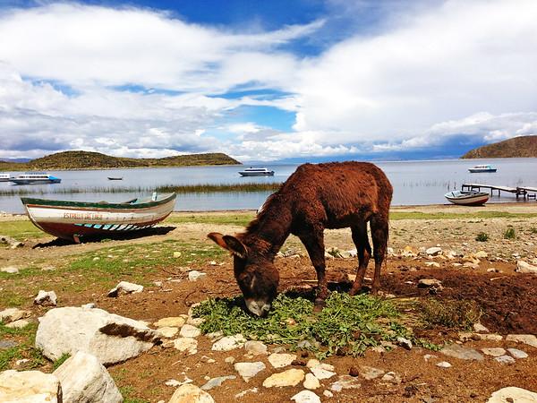 Isla del Sol. Lake Titicaca, Bolivia