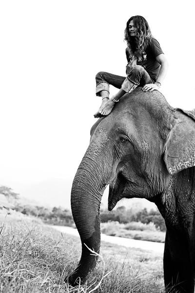 Elephant Man. Pai, Thailand