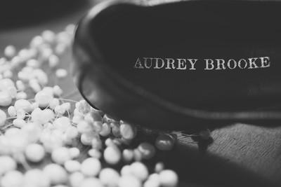AudreyAndMikesWedding_0010