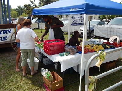 2015 Wellborn Blueberry Festival