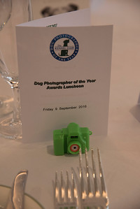 Dog Photographer of the Year 2015 Awards Ceremony