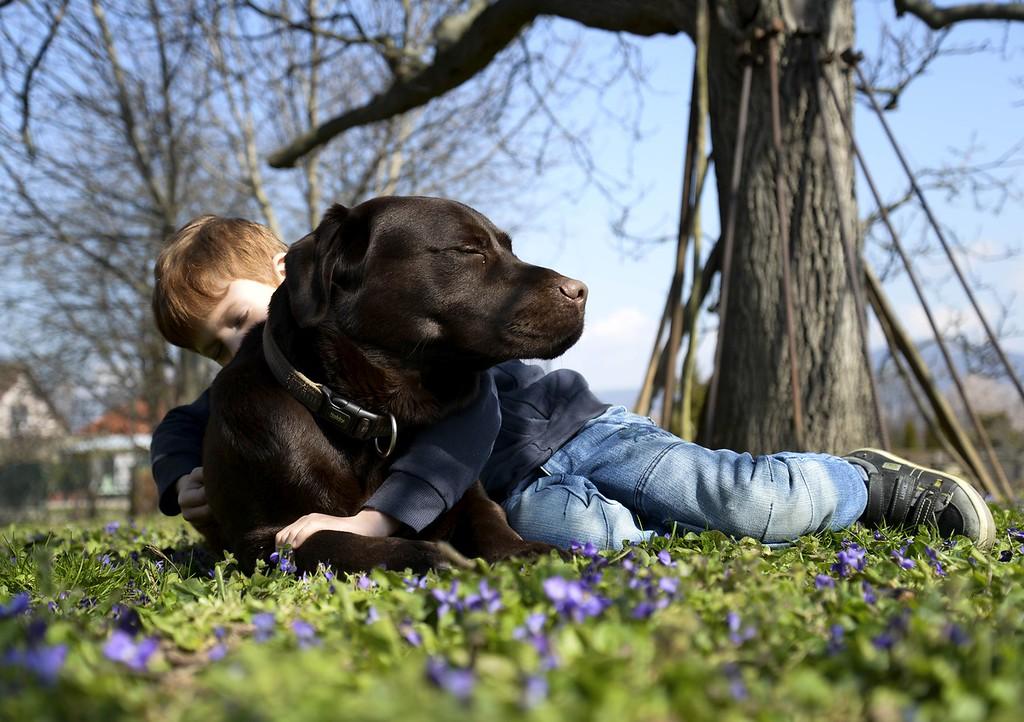 Judges Mention, Assistance Dogs and Dog Charities, Anna Zemberyova, Slovakia