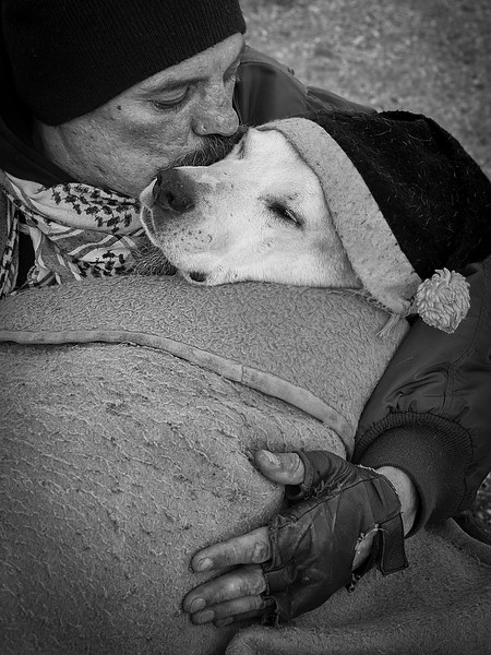 Man's Best Friend 3rd Place Winner, Polina Ulyanova, USA