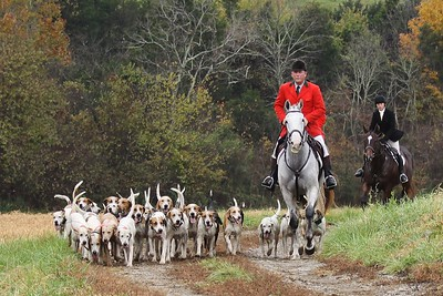 2015 Woodford Hounds Blessing 1