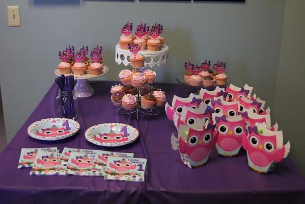 2015- Zara's First Birthday Party