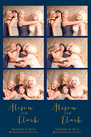 Alison and Clark's Wedding