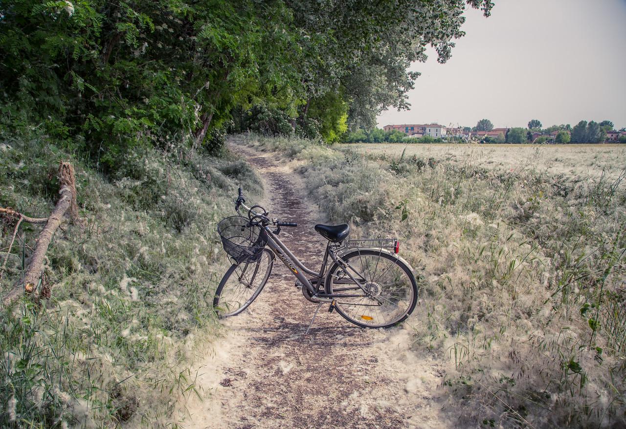 Mantova Trail