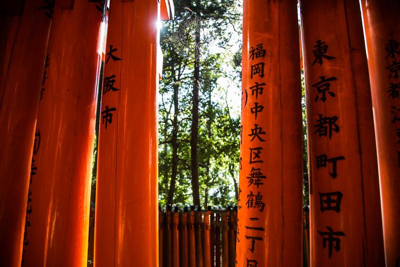 Fushimi Inairi-taisha Columns