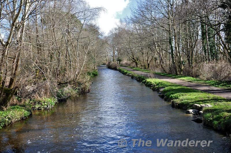 The River Deenagh, Demesne. Fri 13.03.15