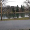 Boiling Springs duck pond