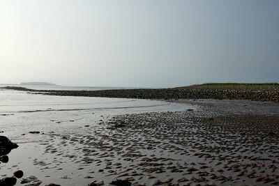 Local beach.