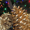 pinecone with christmas lights bokeh background
