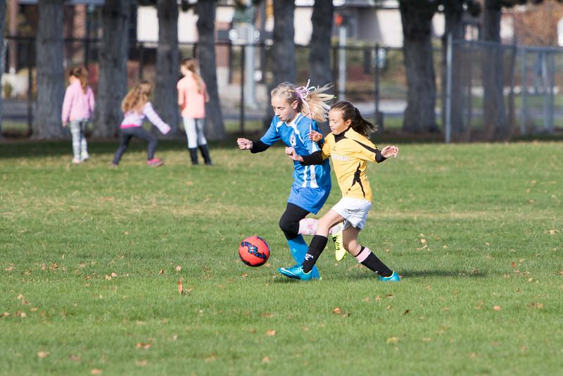 soccer-230