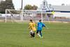 soccer-290