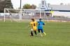 soccer-289