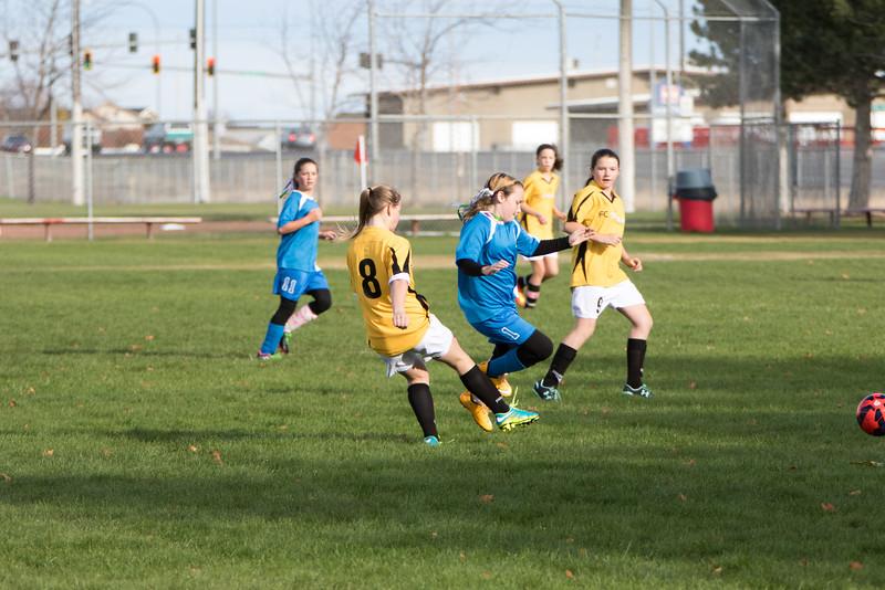 soccer-176