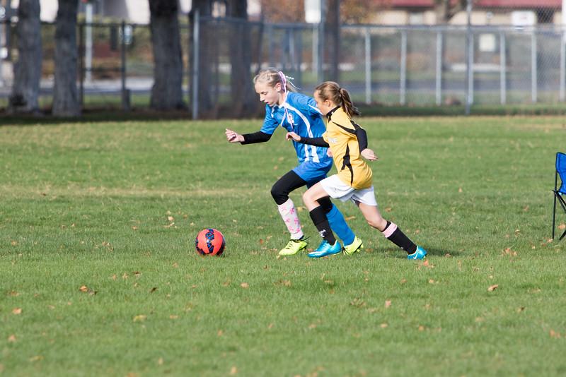 soccer-228
