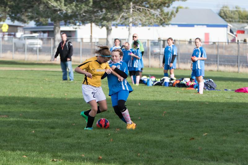 soccer-251
