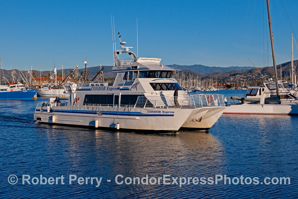 The Condor Express catches the early morning sunlight inside Ventura Harbor.