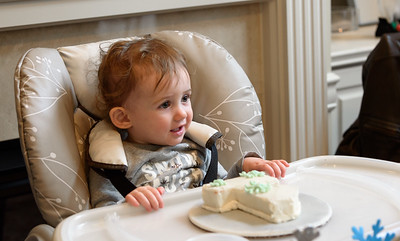 20150117-Brielle 1st Birthday Party-025