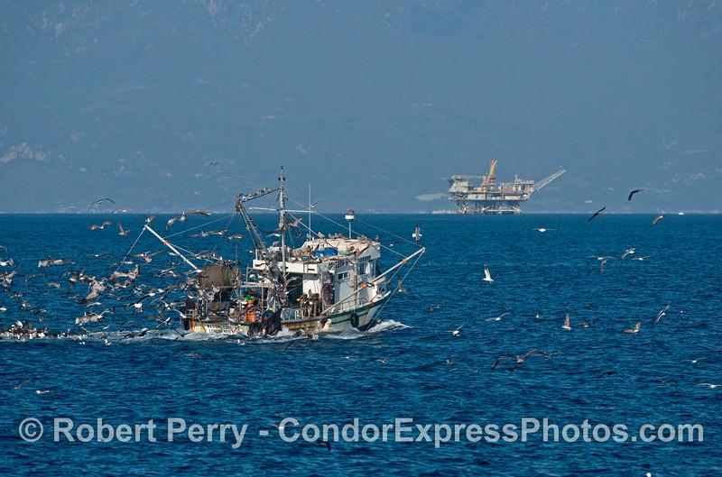 Bottom trawler, seabirds and Platform Habitat.