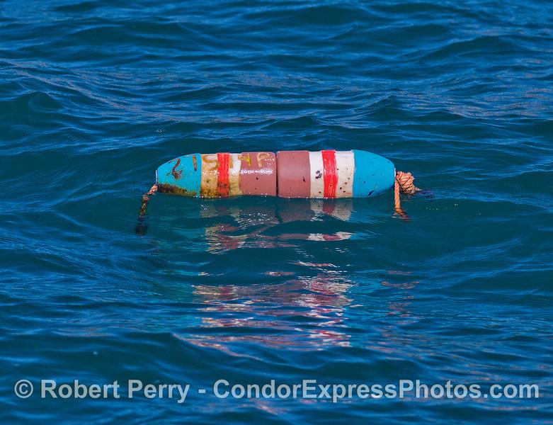 Float marker - lobster trap below.