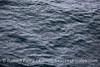 Rain on ocean surface.