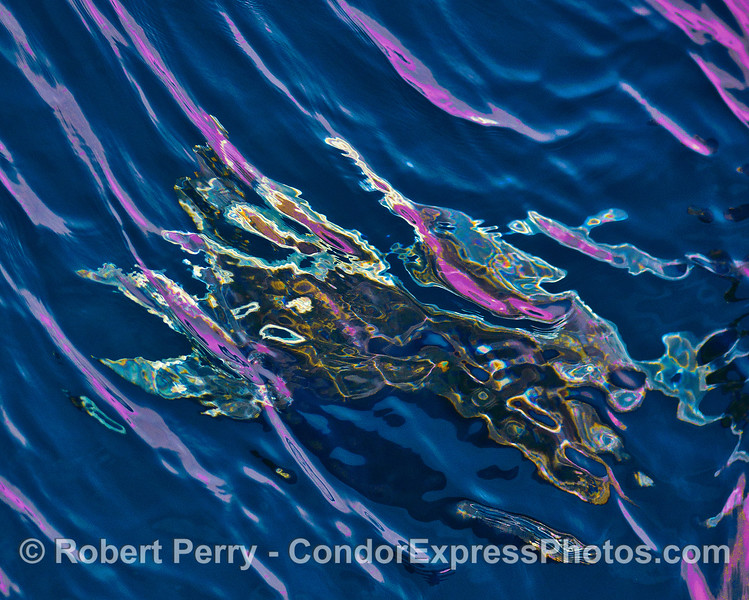 Abstract ocean surface - blue, purple and shiny