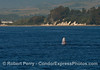 Image 2 of 2:  a breaching gray whale