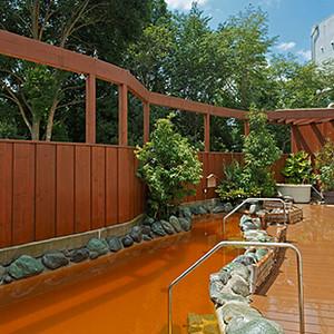 Narita View Hotel Onsen (Hot Springs)