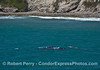 Mother and calf gray whales.