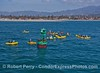 Kayaks mob California sea lions seeking solitude on the harbor buoy - Santa Barbara