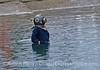 Captain Nemo rises from the ocean at Santa Barbara Harbor