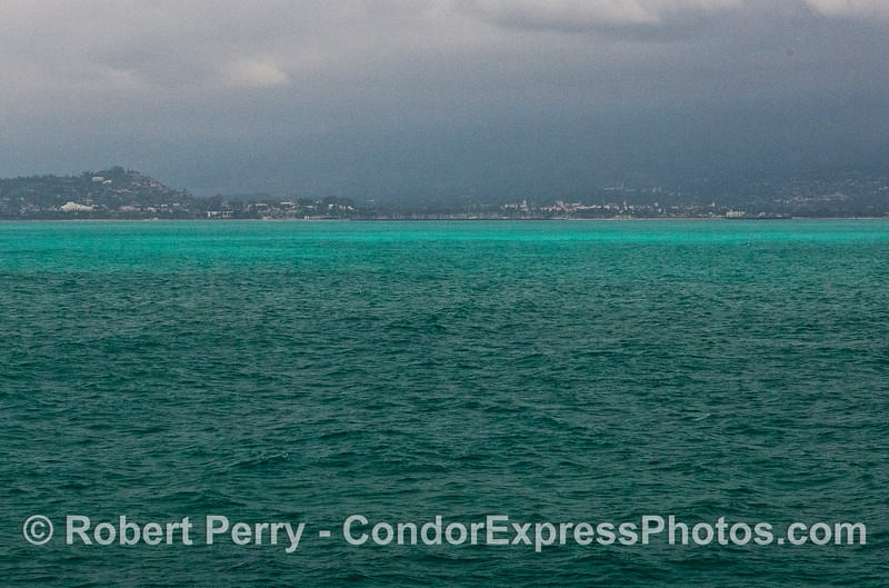 Highly unusual milky turquoise water color has developed in the nearshore waters of Santa Barbara and Ventura.  Most likely this is some kind of phytoplankton bloom.