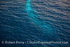 An underwater look at the blue glow from a fin whale