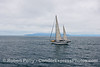 vessel sailboat with islands in back 2015 07-06 SB Channel-a-004