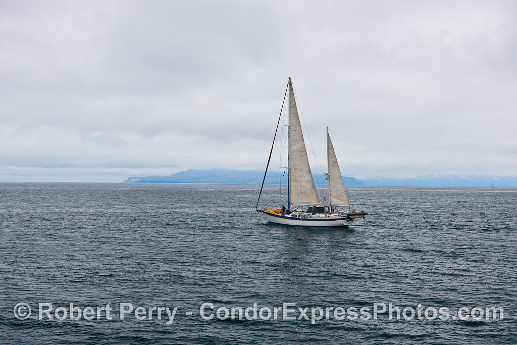 A beautiful sailboat is shown cruising out towards the Channel Islands.