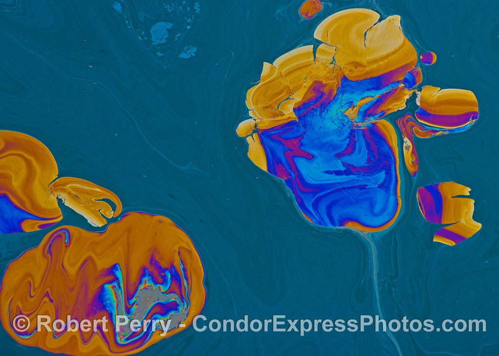 Special friendship - ocean surface abstraction.