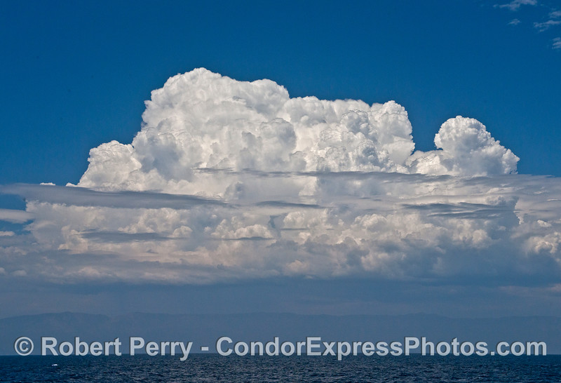 Monsoonal moisture from the Sea of Cortez created this spectacular thunder cloud and probably rain in the back country.