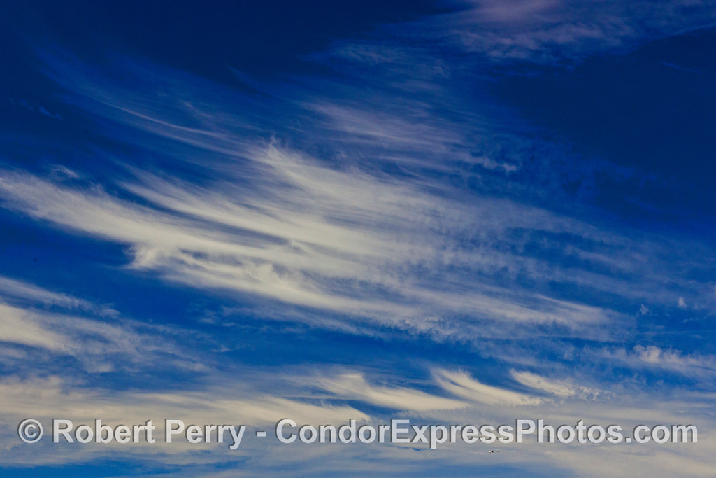 Interesting cloud patterns overhead today.