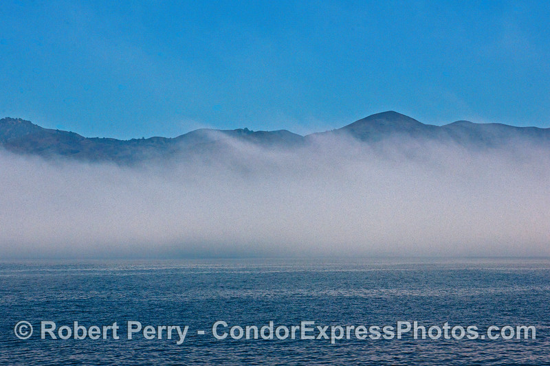 A small fog bank near the northwest coast of Santa Cruz Island.