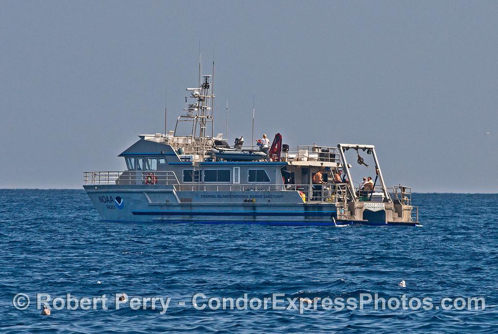 NOAA Research Vessel Shearwater from Santa Barbara - near the Painted Cave, Santa Cruz Island.