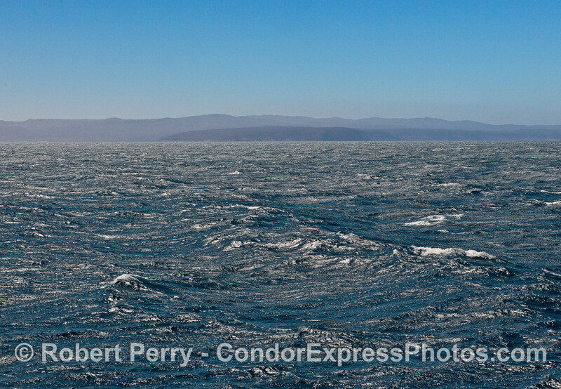 Ocean swells and  plenty of wind - Santa Rosa Island in back.
