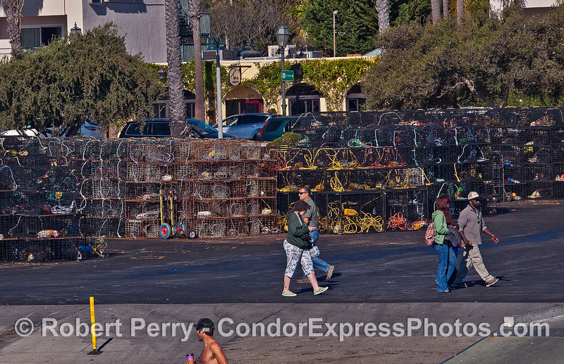 California spiney lobster traps in staging ares take up most of our parking lot this weekend.