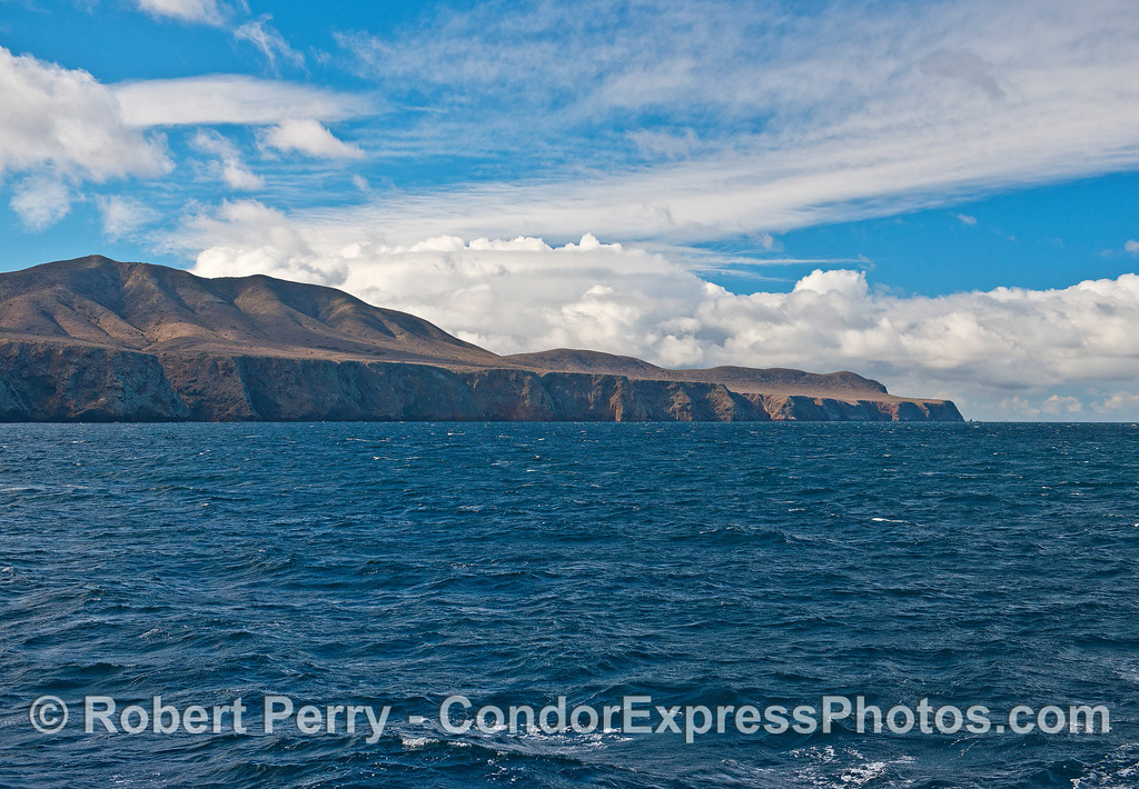 The majestic sea cliffs of Santa Cruz Island.