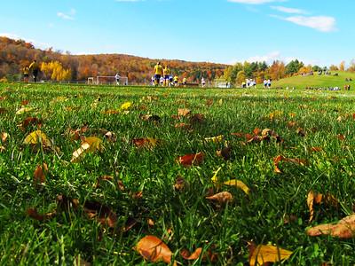 Alex Montano, Woodstock soccer field in Williamstown
